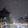 雪の京都です