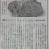 縄文時代の「編みかご」と「クルミ」