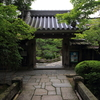 京都 紅葉100シリーズ   美しさを争う竹林宝泉院 NO.84