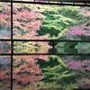 京都の旅②