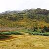 16年9月25日 栂池高原、自然園の紅葉を見に行きました