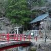 無生野(むしょうの) 風流踊(ふりゅうおどり)に関わる雛鶴神社・・・山梨県上野原市