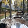 札幌市 インフォメーションセンター エルムの森 / 北大構内 20131102