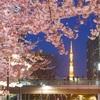 東京ミッドタウンで春の訪れを祝うイベント「ミッドタウン・ブロッサム 2020(MIDTOWN BLOSSOM)」を開催!