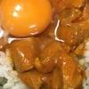 インド 「卵かけご飯プロジェクト」進行中。日本企業の大冒険です