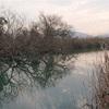 2/16琵琶湖各所の水温は1年で最低ライン❓