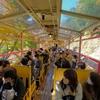 2020年11月の京都旅行 2泊3日 1日目(前半)