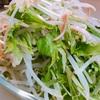 【ズボラ飯】こんなサラダはいかがですか?水菜ともやしとハムのサラダ