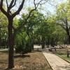 日壇公園(リータン・ゴンユエン)