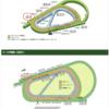 ローズSの阪神1800mの攻略