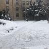 【UW-Madison】極寒のマディソン。最低体感温度ー45度