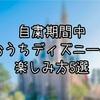 【新型コロナ】ディズニー年パスホルダー流おうちでの過ごし方【うちで過ごそう】