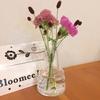 ワンコインで届くお花の定期便「BloomeeLIFE」でお花のある暮らし