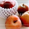 【日常Log #1】桃と余裕のある日々