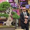 林先生が切った1億円の盆栽を育てた小林國雄の年収が気になる