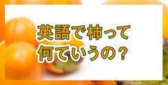 """英語で""""柿""""ってなんていうの?世界では食べられている?"""