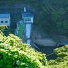 沼本ダム( 神奈川県相模原)