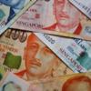 シンガポールの紙幣はプラスチック?紙?