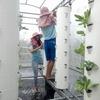 植物工場など農業ビジネスが盛んな台湾、日本からの旅行で水耕栽培・農業体験ツアーを実施