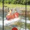 【ポケモンGO】2020年8月のコミュニティ・デイ