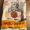 猫猫猫〜なお買い物