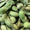 丹波篠山の黒豆の枝豆。