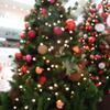 晩の食生活シリーズ 昨年のクリスマス・イブの夜もボッチマス……