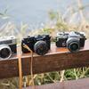 #filmphotography  1月の江ノ島散歩