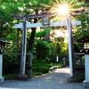 光射す神社 | LEICA 12-60mm