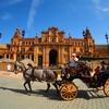 アンダルシア地方セビージャのスペイン広場でお馬さんタクシーはいかが?