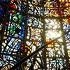 67.箱根 彫刻の森美術館 秋の景色