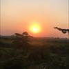 印度放浪記 ガンジャとカレーと深夜バスの物語8