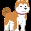 秋田犬は家族に噛みつくこともある!大型犬をおすすめしない理由