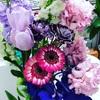 店内のお花🌸