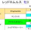 【出資馬レース考察】レッドロムルス、喉鳴りを乗り越え初勝利!!【東サラ】