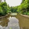 じゅんさい池(新潟県魚沼)