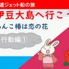 伊豆大島・椿まつりに行こう!【行動編①】(2020年02月15日)