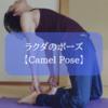 【ヨガ】膝位「ラクダのポーズ」のカウンターポーズ