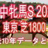 【府中牝馬S 2020】過去10年データと予想