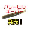 【バレーヒル】奥村部長監修ジャークやフリーフォールなど幅広く使用出来るワーム「ギーバー」発売!