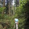 \山と木を見に行く森林バス見楽会の下見/