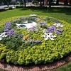 北海道・札幌の大通公園に北海道命名150年を記念した雪ミクの花壇が作られた