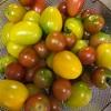 トマト料理