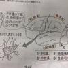 鍼灸の授業記録~20191105~