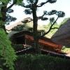 パワースポット「仁比山神社」にお詣りへ 5月4日