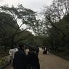 上野動物園だよ。