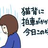 姿勢に気をつけるべし【社交ダンス136回目】