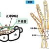 【基礎から学ぶ】尺骨神経麻痺【整形外科学】