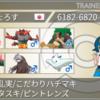【剣盾シーズン8最終262位(レート2018)達成構築】アシレーヌ・デストラクション
