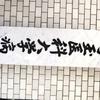 埼玉医大へ受診。
